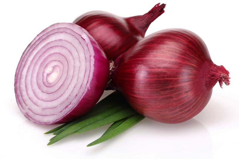 Onion By thepagemagazine.com
