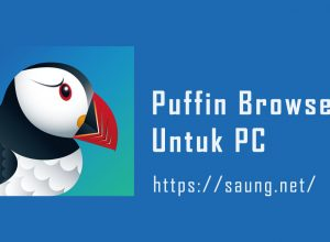 Puffin Browser PC