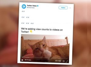 Cara Menyimpan Video dari Twitter Tanpa Aplikasi Tambahan