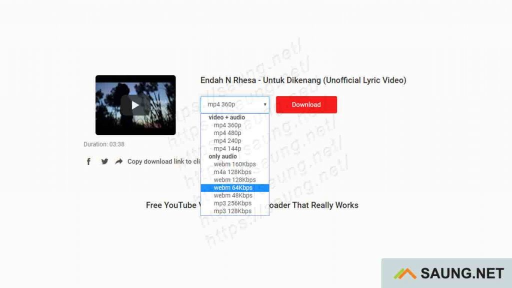 download video youtube online