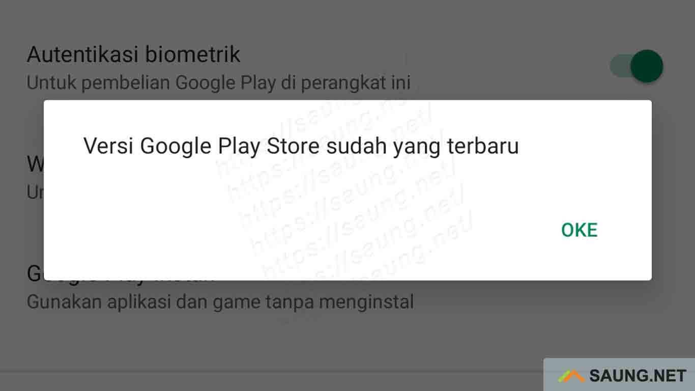 pembaruan google play store