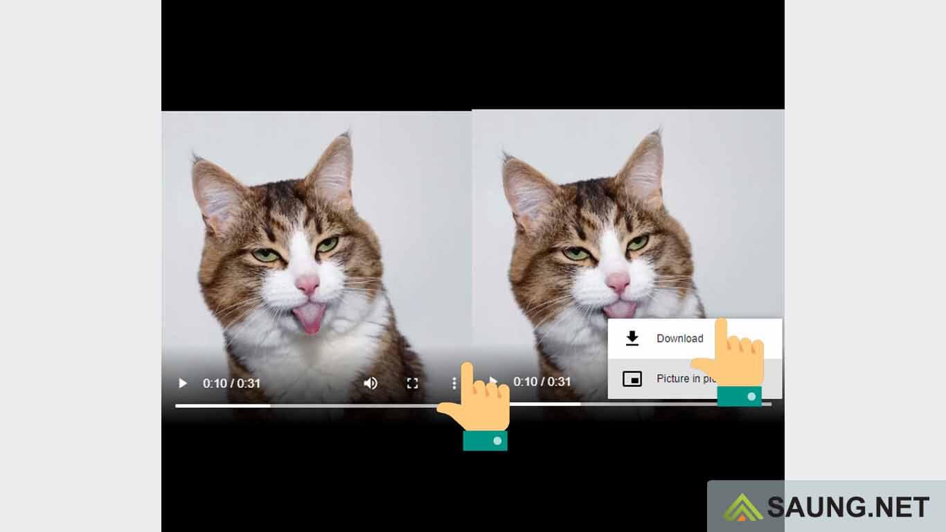cara download video dari pinterest