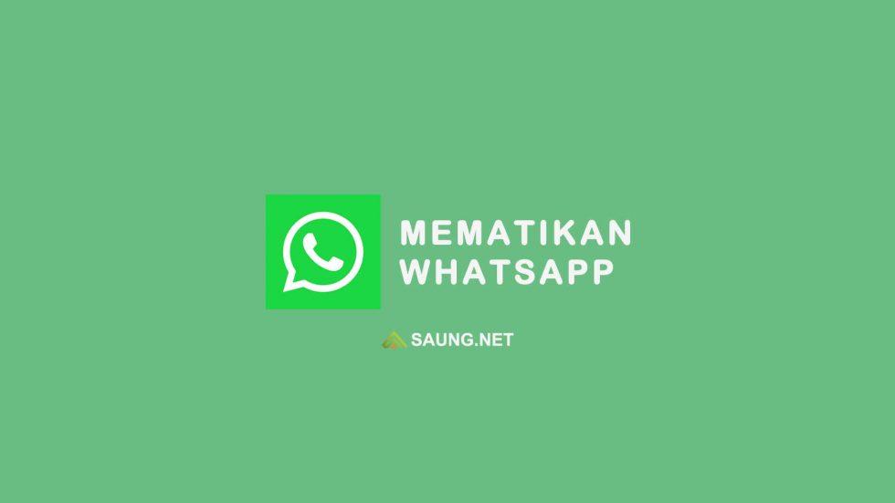cara mematikan whatsapp sementara