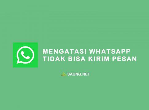 whatsapp tidak bisa kirim pesan